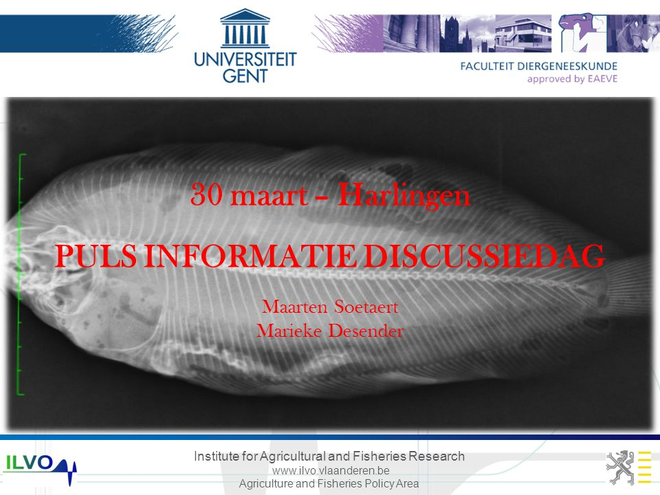 Institute for Agricultural and Fisheries Research www.ilvo.vlaanderen.be Agriculture and Fisheries Policy Area Institute for Agricultural and Fisheries Research 30 maart – Harlingen PULS INFORMATIE DISCUSSIEDAG Maarten Soetaert Marieke Desender