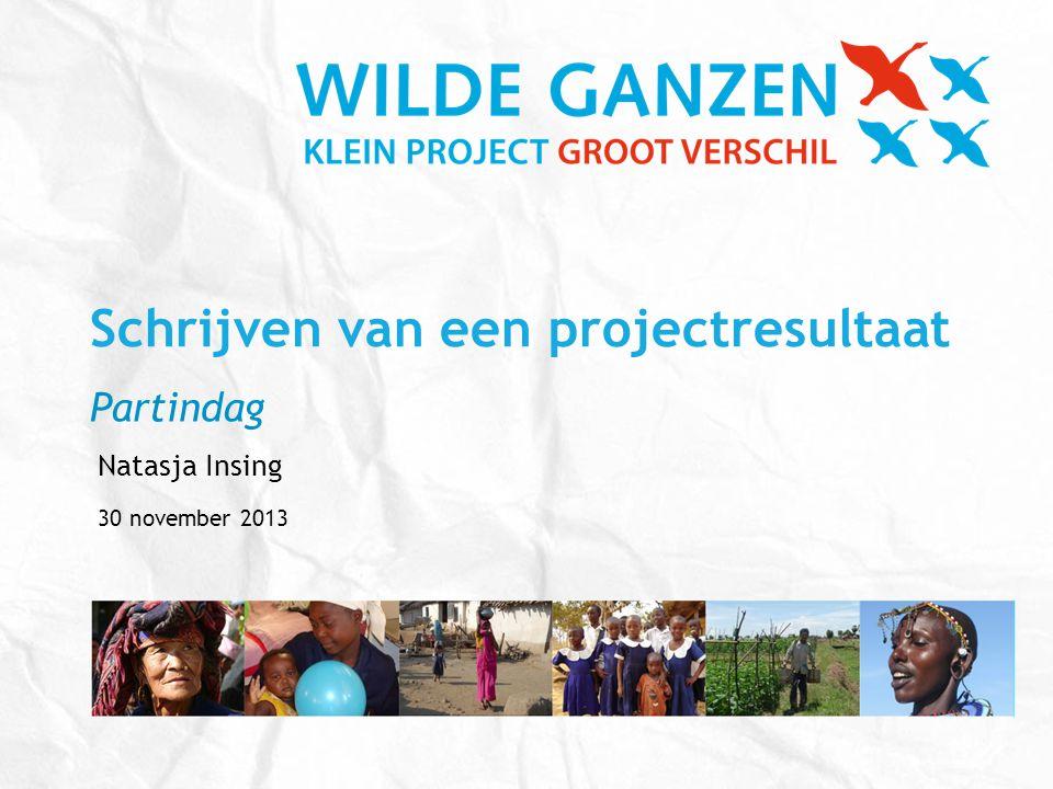 Schrijven van een projectresultaat Partindag Natasja Insing 30 november 2013
