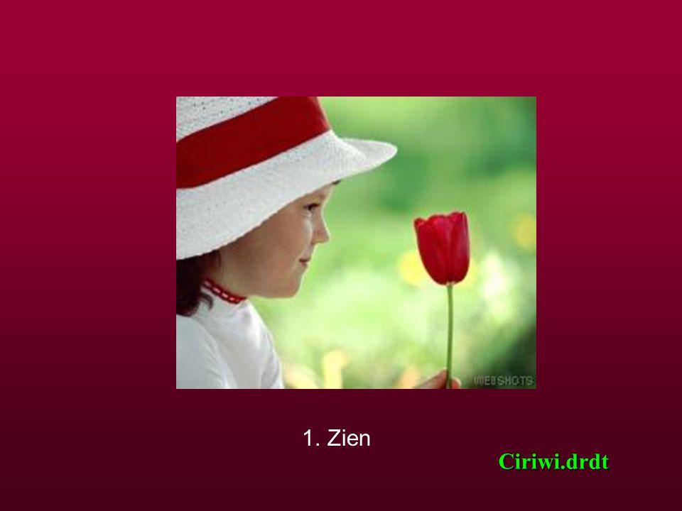 Het meisje aarzelde en zei: « Ik denk dat de zeven wereldwonderen de volgende zijn: » Ciriwi.drdt