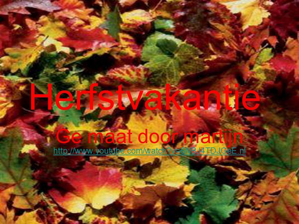 Wat ga ik doen in de Herfstvakantie •I•Ik ga met een amfibus mee • dat is pas leuk •h•http://www.mojnet.com/video-testirali- amfibus/fcc3ef15e60dcf3dd8fc.nl