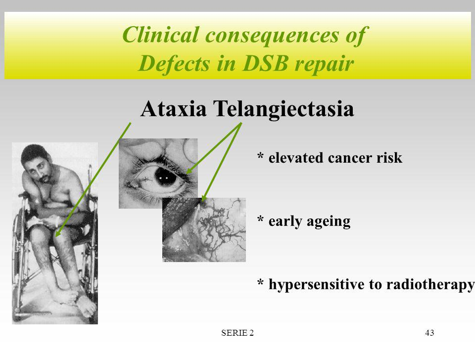 SERIE 243 Clinical consequences of Defects in DSB repair Ataxia Telangiectasia * elevated cancer risk * early ageing * hypersensitive to radiotherapy