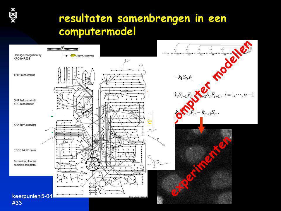 keerpunten 5-04 #33 resultaten samenbrengen in een computermodel experimenten computer modellen