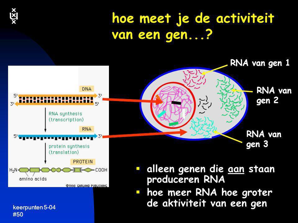 keerpunten 5-04 #50 hoe meet je de activiteit van een gen...?  alleen genen die aan staan produceren RNA  hoe meer RNA hoe groter de aktiviteit van