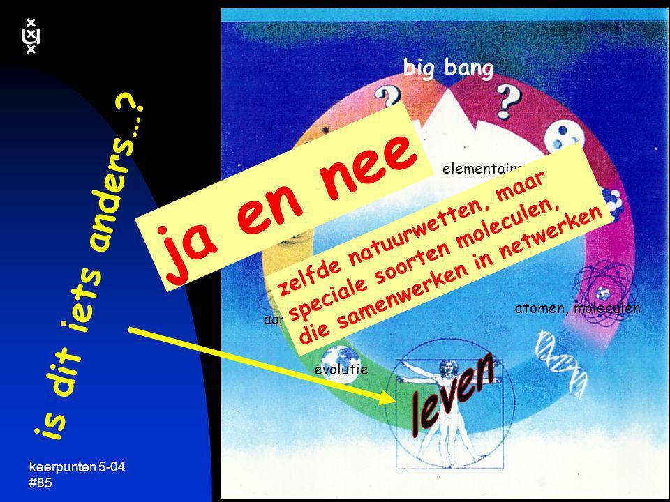 keerpunten 5-04 #85 is dit iets anders…? elementaire deeltjes atomen, moleculen zonnestelsels sterrenstelsels big bang evolutie aarde, ecologie ja en