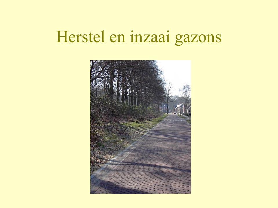 Herstel en inzaai gazons