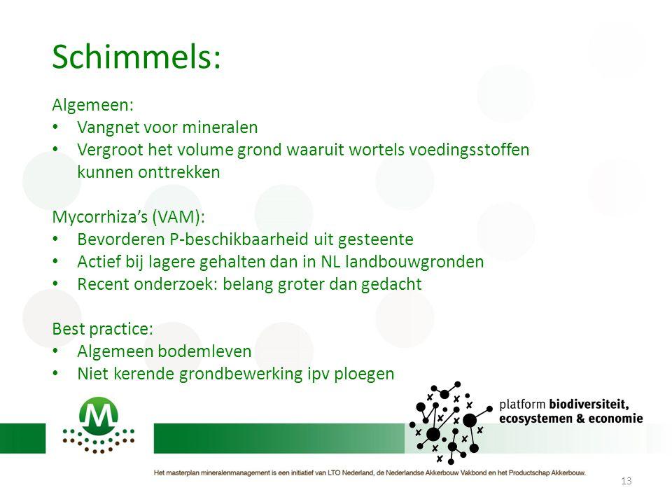 13 Schimmels: Algemeen: • Vangnet voor mineralen • Vergroot het volume grond waaruit wortels voedingsstoffen kunnen onttrekken Mycorrhiza's (VAM): • B