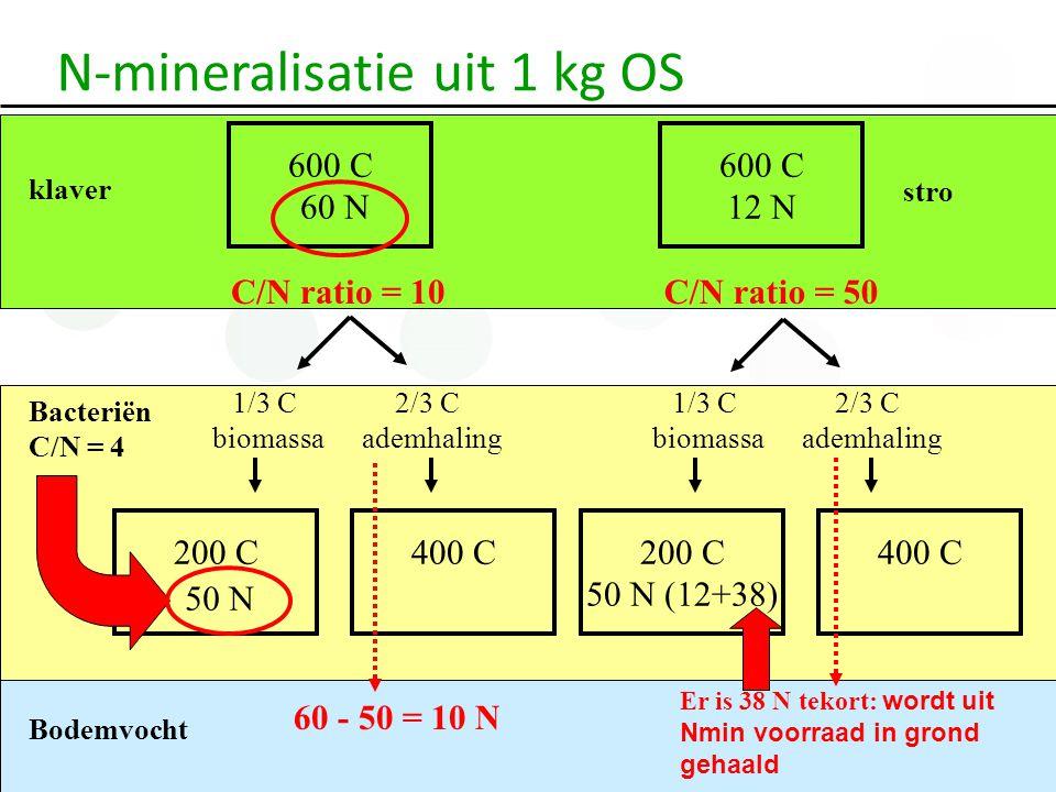 600 C 60 N C/N ratio = 10 klaver Bacteriën C/N = 4 1/3 C biomassa 2/3 C ademhaling 1/3 C biomassa 2/3 C ademhaling 200 C 50 N (12+38) 400 C 600 C 12 N C/N ratio = 50 stro Bodemvocht 200 C400 C 50 N 60 - 50 = 10 N Er is 38 N tekort: wordt uit Nmin voorraad in grond gehaald N-mineralisatie uit 1 kg OS