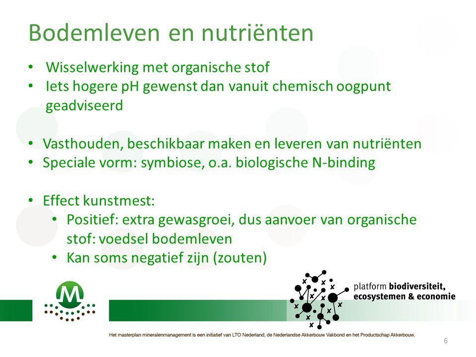 Bodemleven en nutriënten 6 • Wisselwerking met organische stof • Iets hogere pH gewenst dan vanuit chemisch oogpunt geadviseerd • Vasthouden, beschikbaar maken en leveren van nutriënten • Speciale vorm: symbiose, o.a.