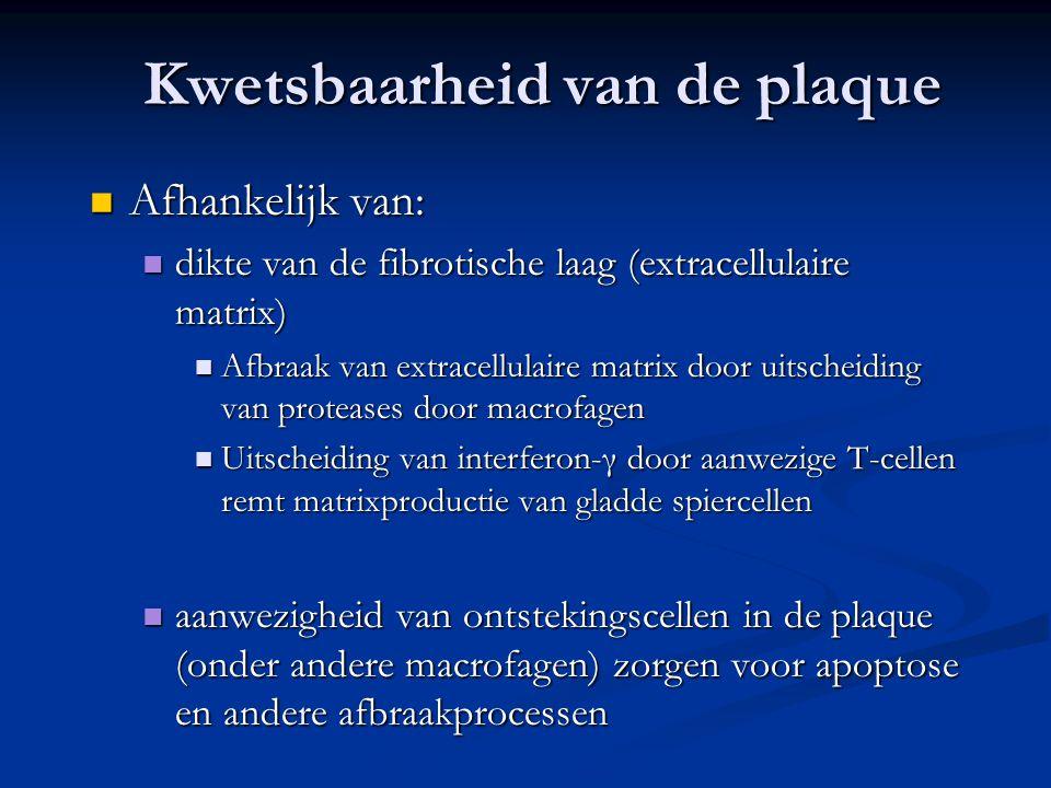 Kwetsbaarheid van de plaque  Afhankelijk van:  dikte van de fibrotische laag (extracellulaire matrix)  Afbraak van extracellulaire matrix door uits