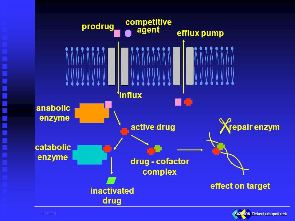 SAZINON Ziekenhuisapotheek prodrug anabolic enzyme active drug catabolic enzyme inactivated drug drug - cofactor complex effect on target influx efflu