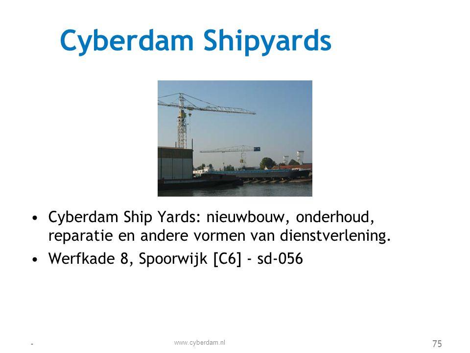 Cyberlande VINEX locatie •Vinex locatie Cyberlande biedt plaats aan 4000 woningen, in deelplannen met elk een eigen karakter.