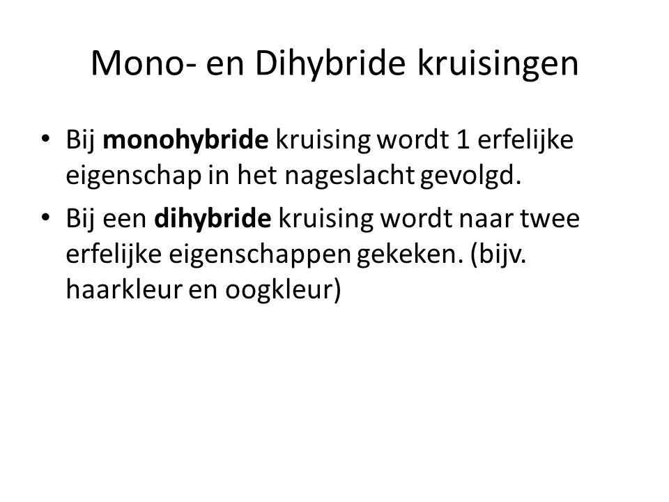 Mono- en Dihybride kruisingen • Bij monohybride kruising wordt 1 erfelijke eigenschap in het nageslacht gevolgd. • Bij een dihybride kruising wordt na
