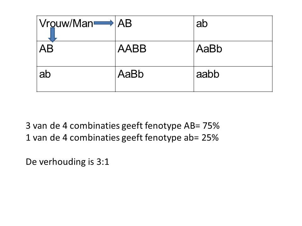 Vrouw/ManABab ABAABBAaBb abAaBbaabb 3 van de 4 combinaties geeft fenotype AB= 75% 1 van de 4 combinaties geeft fenotype ab= 25% De verhouding is 3:1