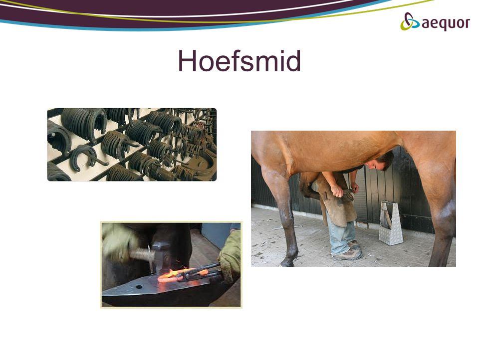 Hoefsmid
