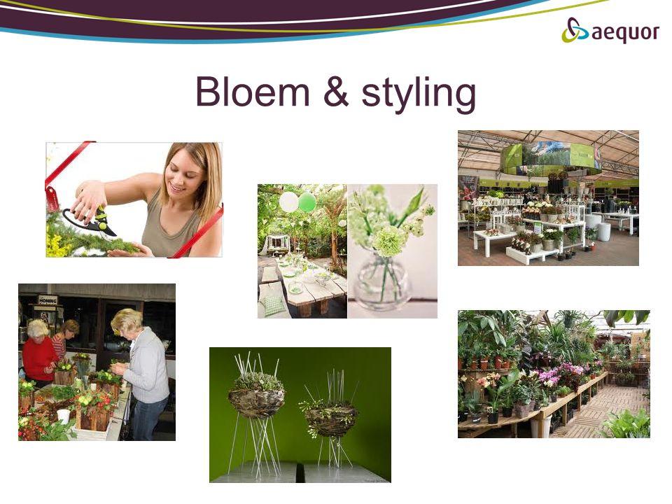 Bloem & styling