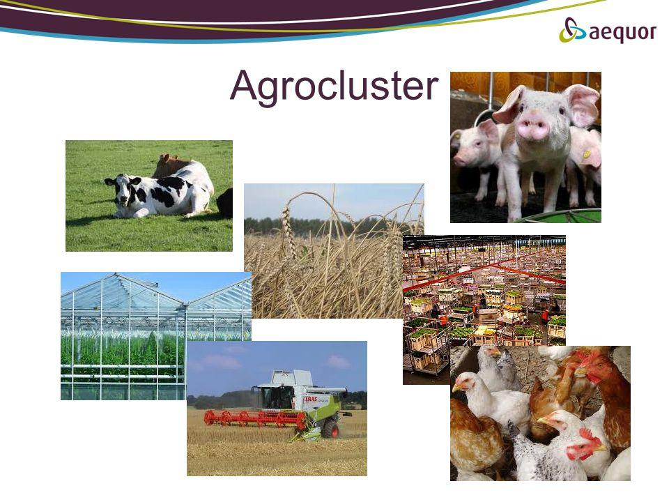 Agrocluster