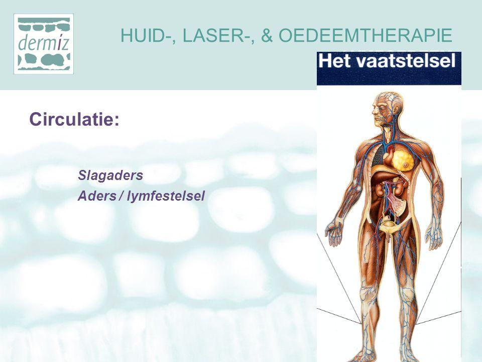 Het lymfestelsel Bestaat uit lymfevaten en lymfeknopen Verdeeld in drainagegebieden Lymfe wordt verplaatst door Spiercontractie ademhaling verschil hoge en lage weefseldruk HUID-, LASER-, & OEDEEMTHERAPIE LYMFOEDEEM