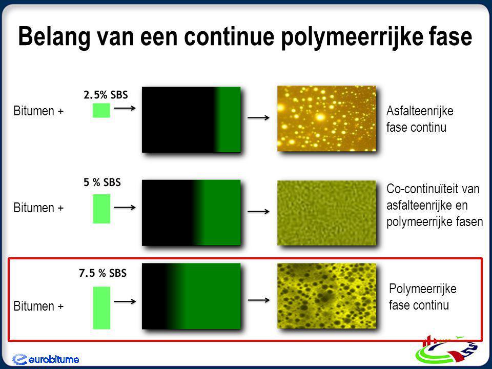 Belang van een continue polymeerrijke fase Asfalteenrijke fase continu Co-continuïteit van asfalteenrijke en polymeerrijke fasen Polymeerrijke fase continu Bitumen +