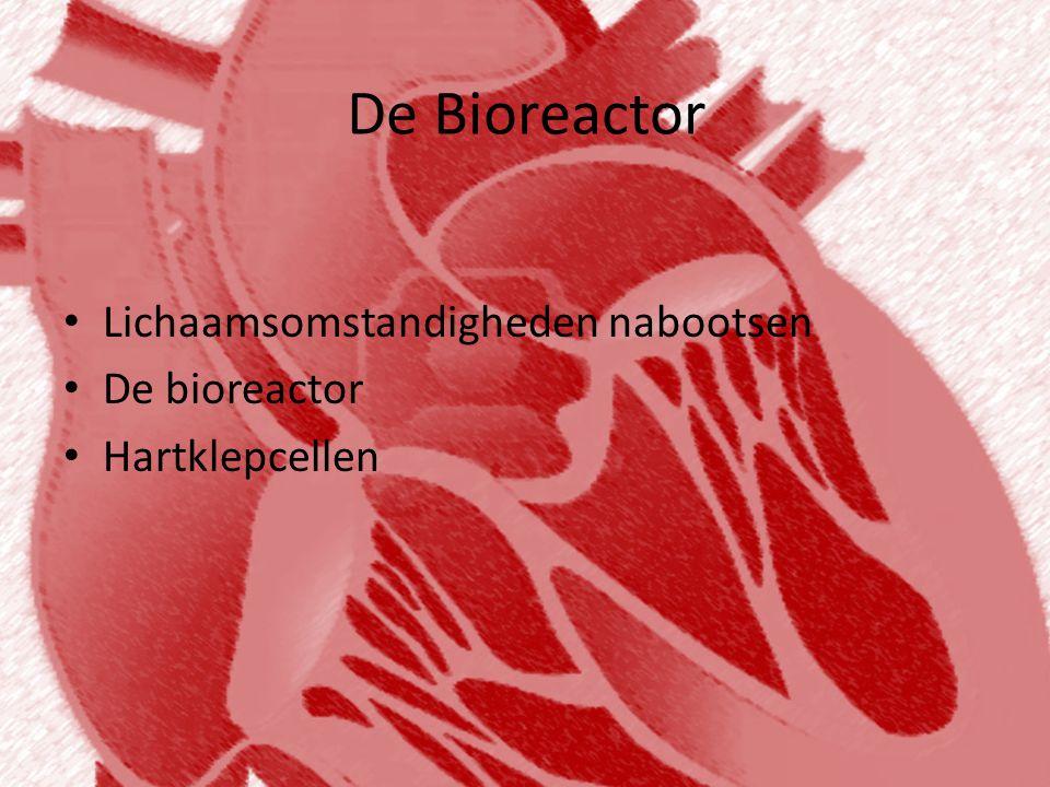 De Bioreactor • Lichaamsomstandigheden nabootsen • De bioreactor • Hartklepcellen