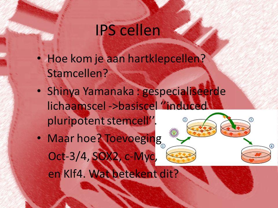 IPS cellen • Hoe kom je aan hartklepcellen? Stamcellen? • Shinya Yamanaka : gespecialiseerde lichaamscel ->basiscel ''induced pluripotent stemcell''.