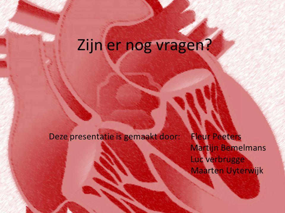 Zijn er nog vragen? Deze presentatie is gemaakt door: Fleur Peeters Martijn Bemelmans Luc verbrugge Maarten Uyterwijk
