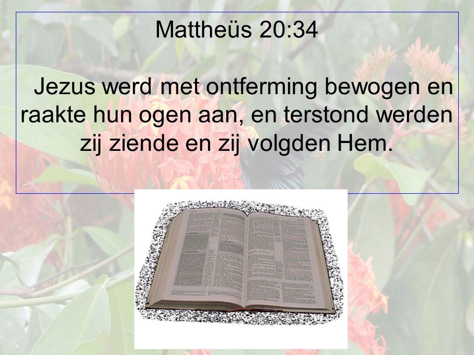 Mattheüs 20:34 Jezus werd met ontferming bewogen en raakte hun ogen aan, en terstond werden zij ziende en zij volgden Hem.