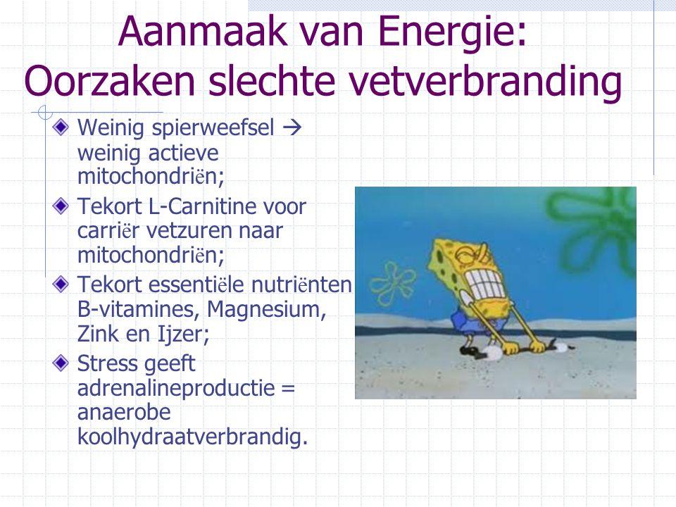 Aanmaak van Energie: Oorzaken slechte vetverbranding Weinig spierweefsel  weinig actieve mitochondri ë n; Tekort L-Carnitine voor carri ë r vetzuren