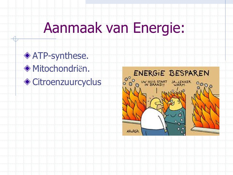 Aanmaak van Energie: ATP-synthese. Mitochondri ë n. Citroenzuurcyclus