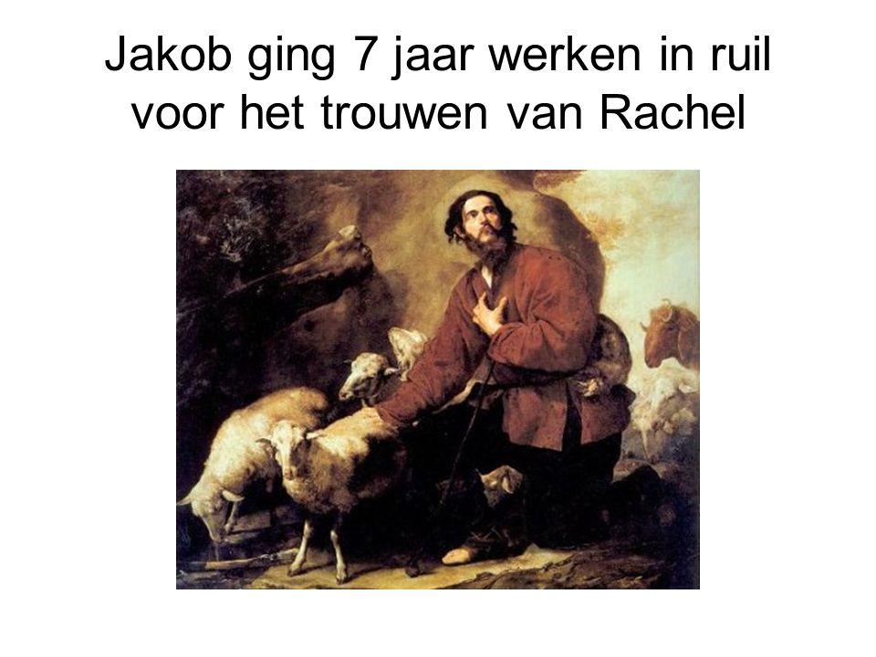 Jakob ging 7 jaar werken in ruil voor het trouwen van Rachel