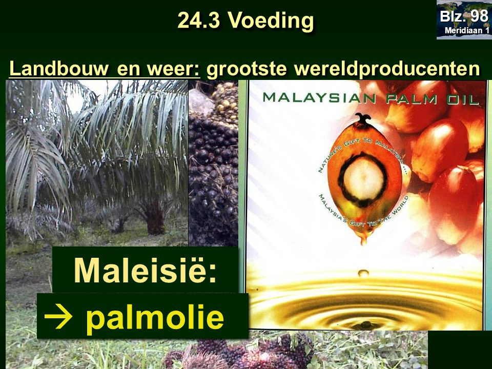 Landbouw en weer: grootste wereldproducenten Maleisië:  palmolie 24.3 Voeding Meridiaan 1 Meridiaan 1 Blz. 98