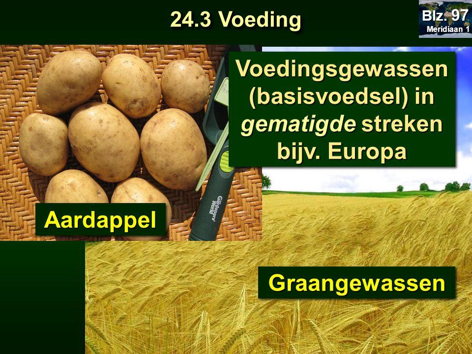 Voedingsgewassen (basisvoedsel) in gematigde streken bijv. Europa Voedingsgewassen (basisvoedsel) in gematigde streken bijv. Europa AardappelAardappel