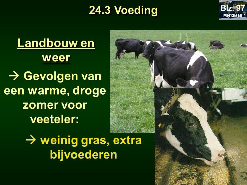  weinig gras, extra bijvoederen Landbouw en weer  Gevolgen van een warme, droge zomer voor veeteler: 24.3 Voeding Meridiaan 1 Meridiaan 1 Blz. 97