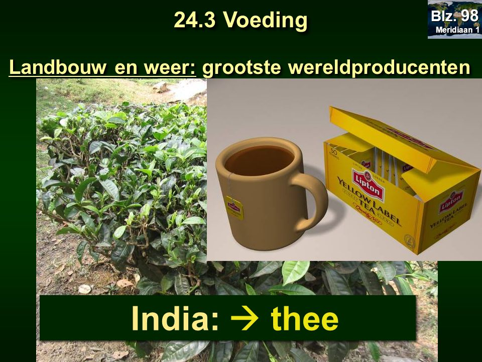 Landbouw en weer: grootste wereldproducenten India:  thee 24.3 Voeding Meridiaan 1 Meridiaan 1 Blz. 98