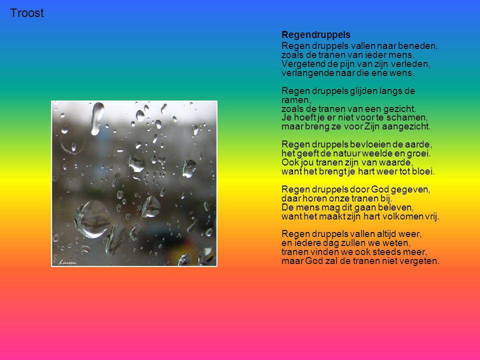 Troost Regendruppels Regen druppels vallen naar beneden, zoals de tranen van ieder mens.