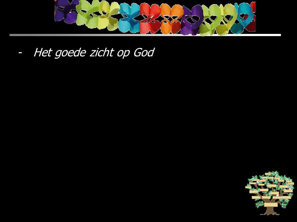 -Het goede zicht op God
