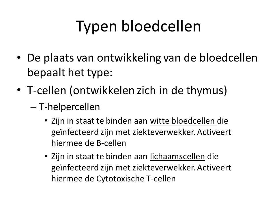 Typen bloedcellen • De plaats van ontwikkeling van de bloedcellen bepaalt het type: • T-cellen (ontwikkelen zich in de thymus) – T-helpercellen • Zijn in staat te binden aan witte bloedcellen die geïnfecteerd zijn met ziekteverwekker.