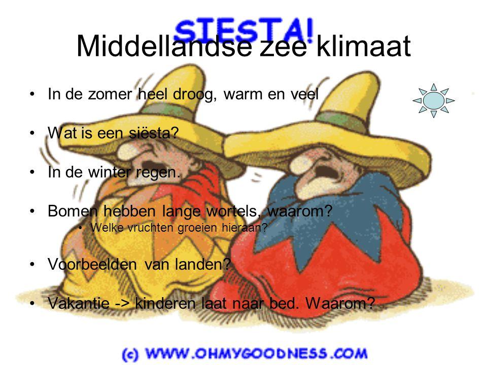 Middellandse zee klimaat •I•In de zomer heel droog, warm en veel •W•Wat is een siësta? •I•In de winter regen. •B•Bomen hebben lange wortels, waarom? •