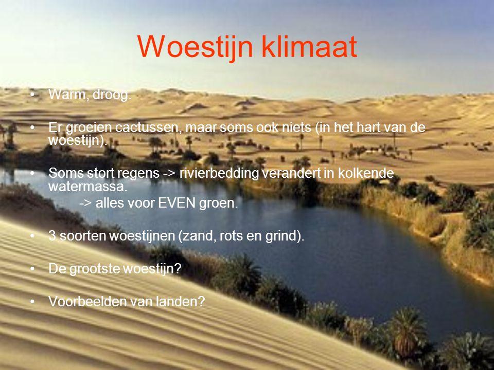 Woestijn klimaat •Warm, droog. •Er groeien cactussen, maar soms ook niets (in het hart van de woestijn). •Soms stort regens -> rivierbedding verandert