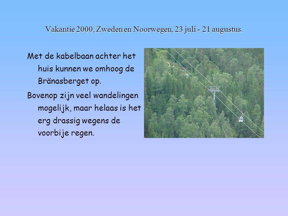 Vakantie 2000, Zweden en Noorwegen, 23 juli - 21 augustus. Met de kabelbaan achter het huis kunnen we omhoog de Bränasberget op. Bovenop zijn veel wan