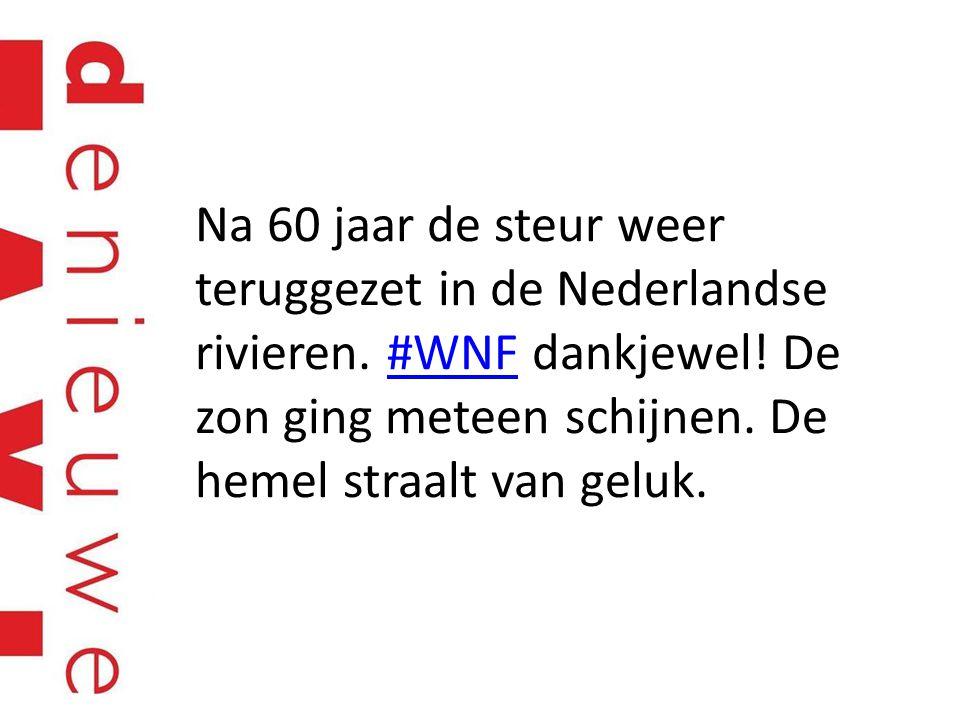 Na 60 jaar de steur weer teruggezet in de Nederlandse rivieren. #WNF dankjewel! De zon ging meteen schijnen. De hemel straalt van geluk.#WNF