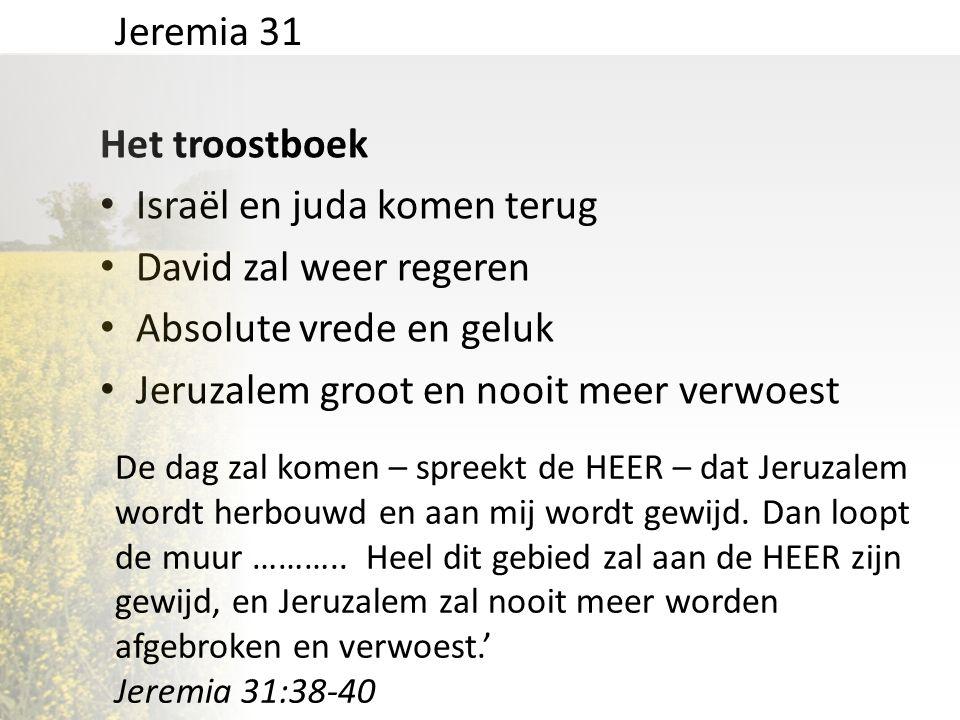 Het troostboek • Israël en juda komen terug • David zal weer regeren • Absolute vrede en geluk • Jeruzalem groot en nooit meer verwoest Jeremia 31 De