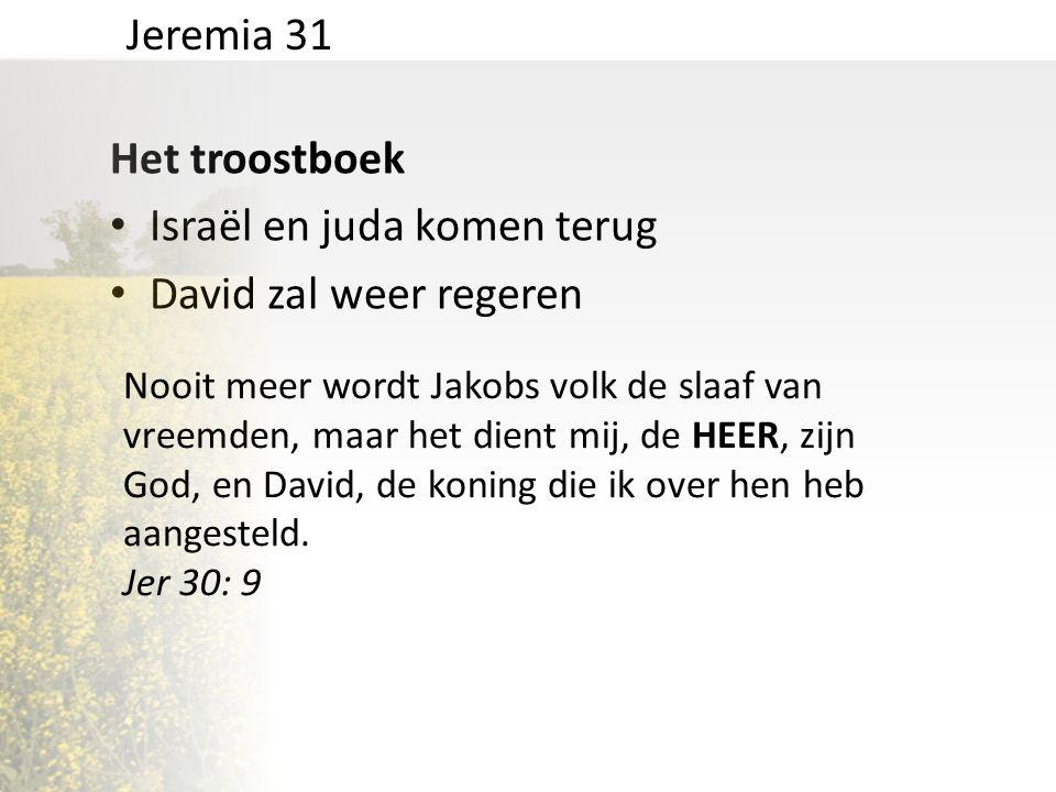 Het troostboek • Israël en juda komen terug • David zal weer regeren • Absolute vrede en geluk Jeremia 31 Zij komen juichend naar de Sion, stralend van vreugde...nooit meer zal het hun aan iets ontbreken.