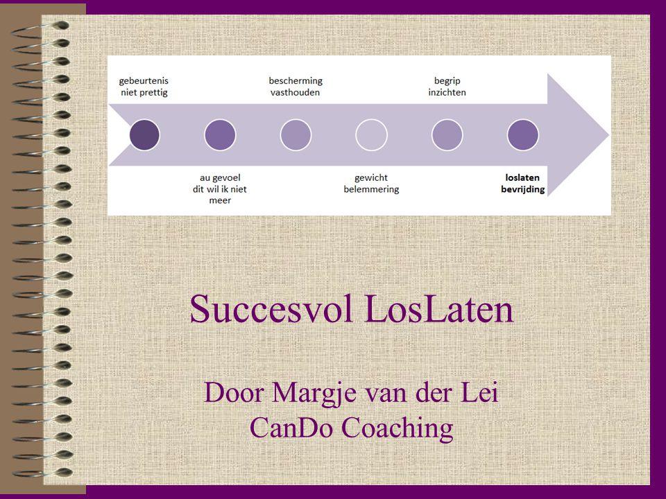 Succesvol LosLaten Door Margje van der Lei CanDo Coaching