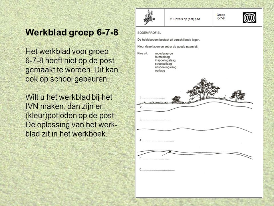 Werkblad groep 6-7-8 Het werkblad voor groep 6-7-8 hoeft niet op de post gemaakt te worden. Dit kan ook op school gebeuren. Wilt u het werkblad bij he