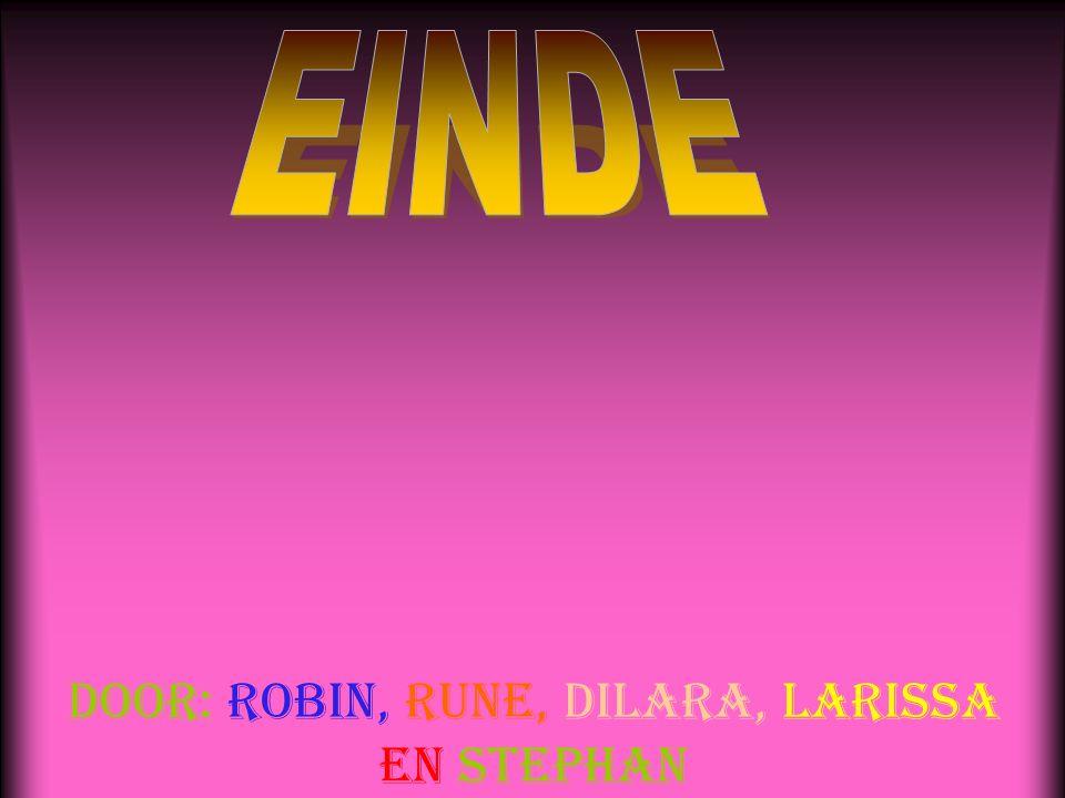 Door: Robin, Rune, Dilara, Larissa en Stephan