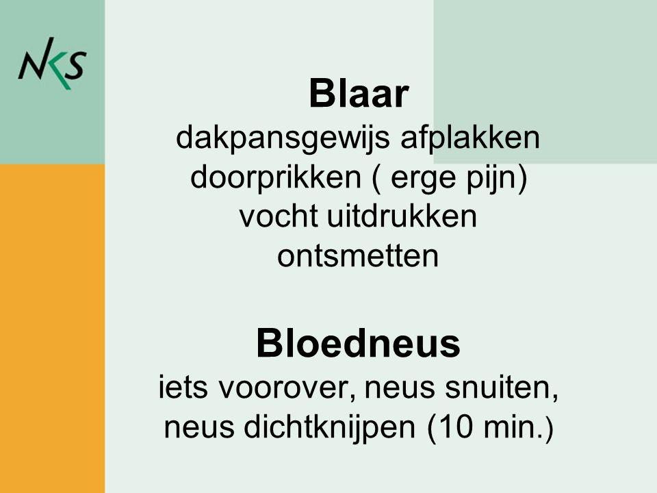Peter Rademakers / sportadviseur Blaar dakpansgewijs afplakken doorprikken ( erge pijn) vocht uitdrukken ontsmetten Bloedneus iets voorover, neus snui