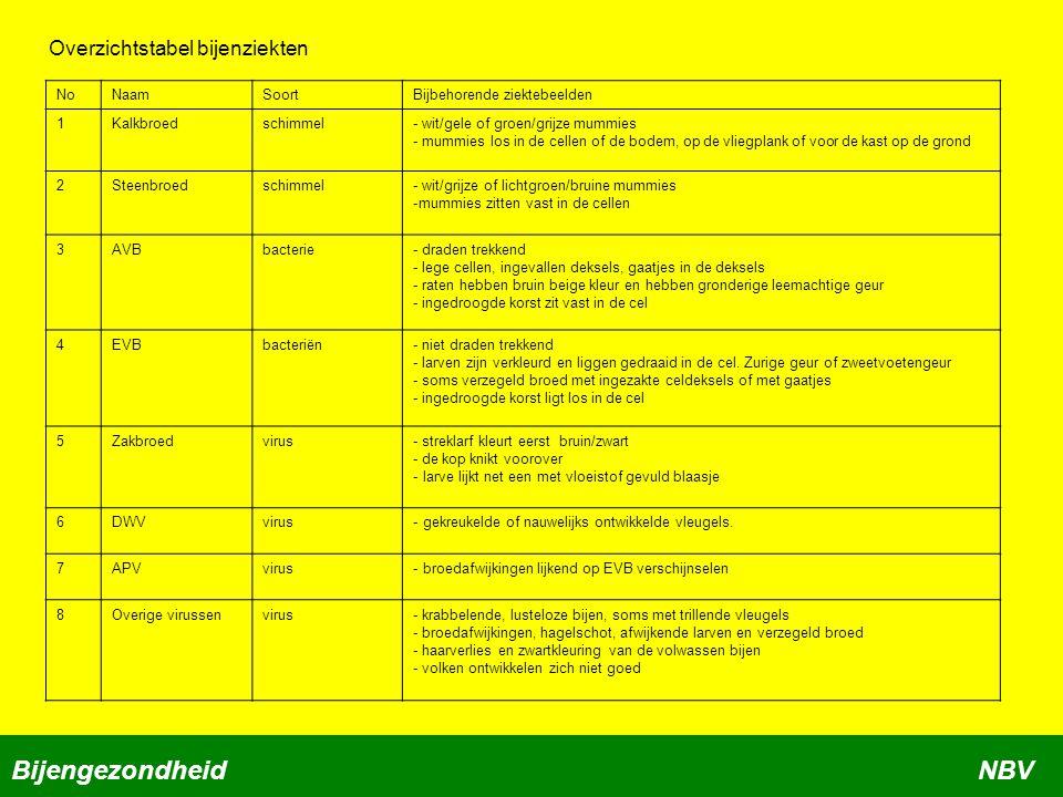 BijengezondheidNBV Overzichtstabel bijenziekten NoNaamSoortBijbehorende ziektebeelden 1Kalkbroedschimmel- wit/gele of groen/grijze mummies - mummies l