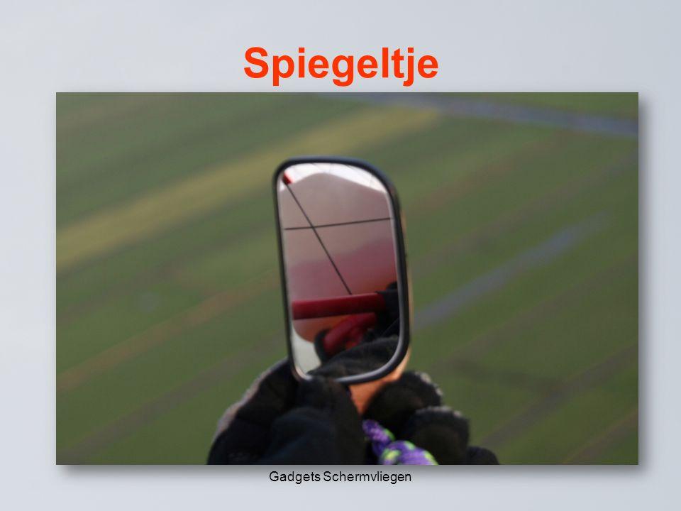 Spiegeltje Gadgets Schermvliegen