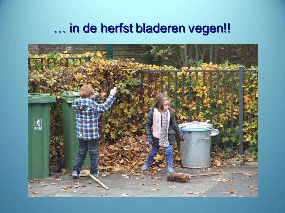… in de herfst bladeren vegen!!