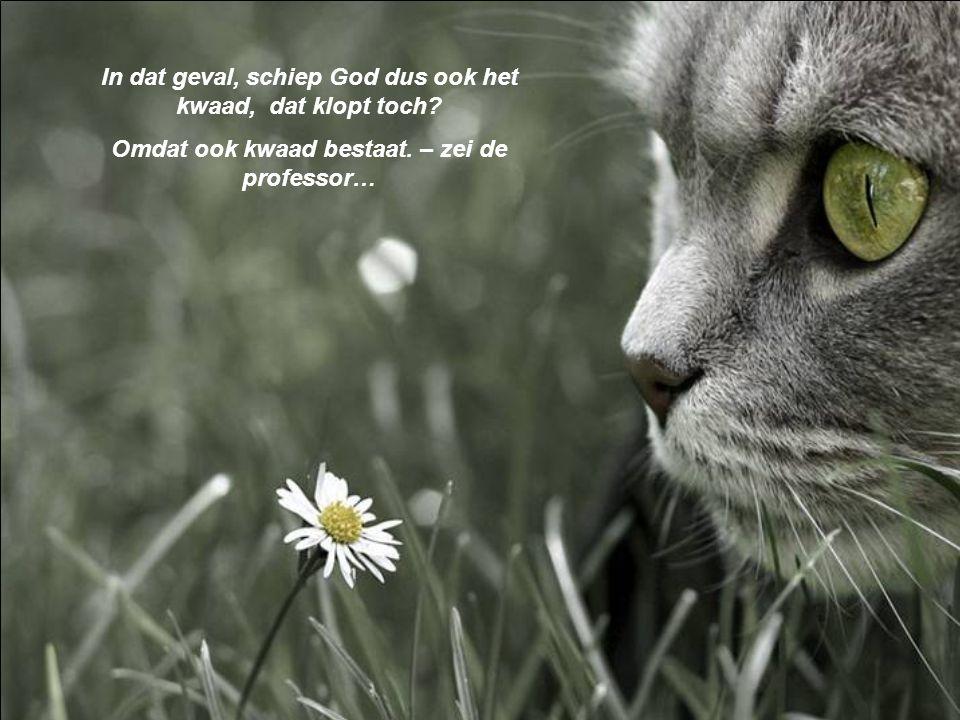 In dat geval, schiep God dus ook het kwaad, dat klopt toch.